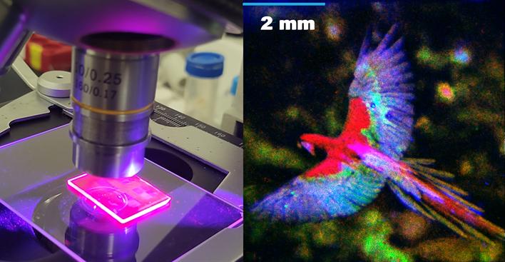 Patterned quantum dot samples